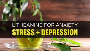 l-theanine-for-anxiety
